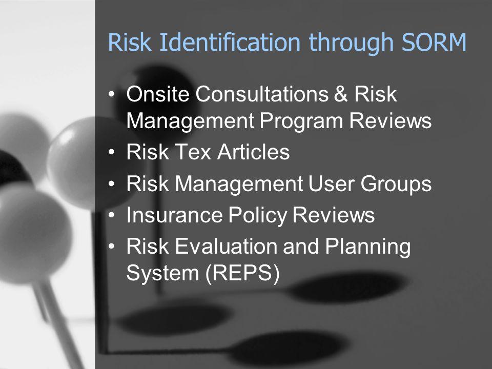 Risk Identification through SORM