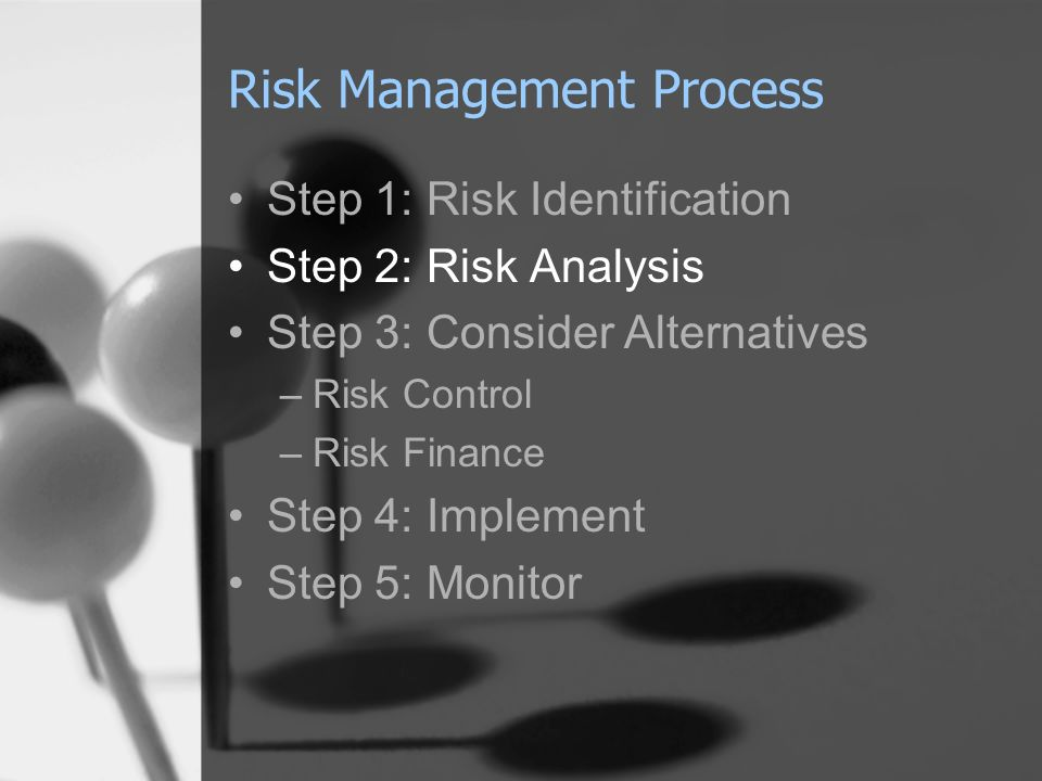 Risk Management Process
