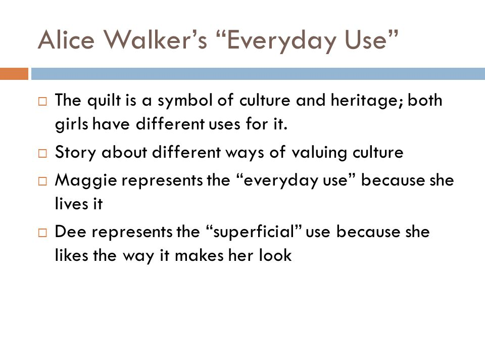what is everyday use by alice walker about