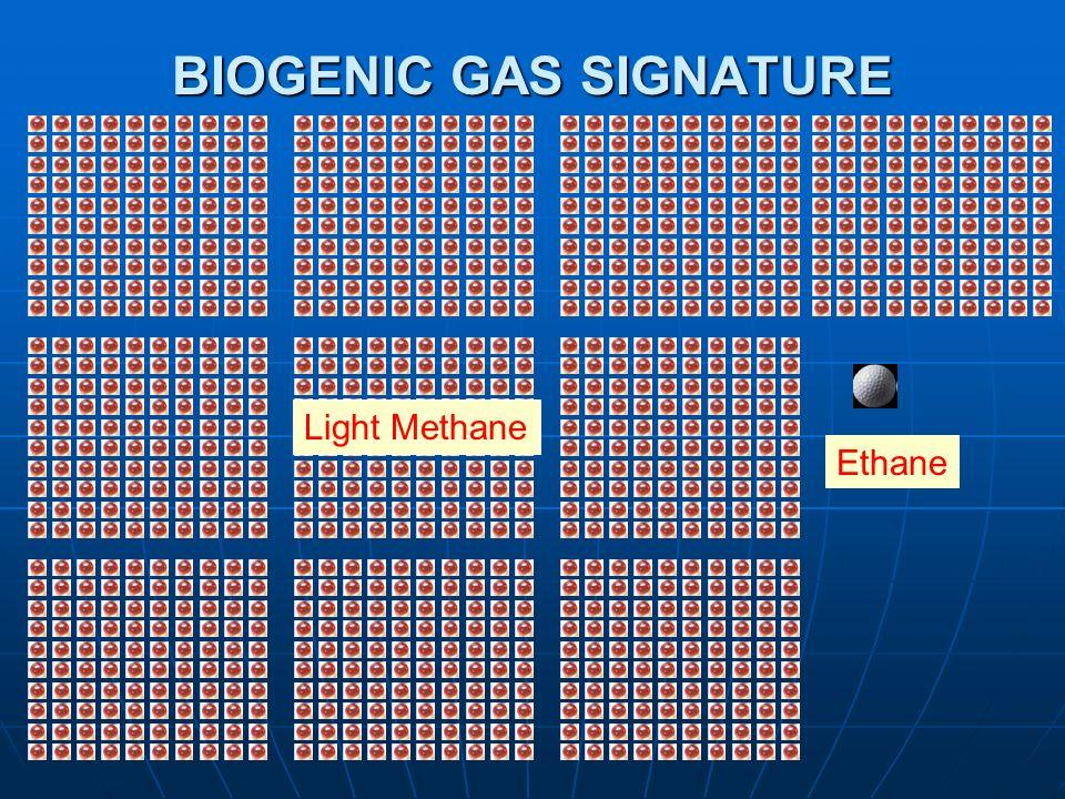 BIOGENIC GAS SIGNATURE