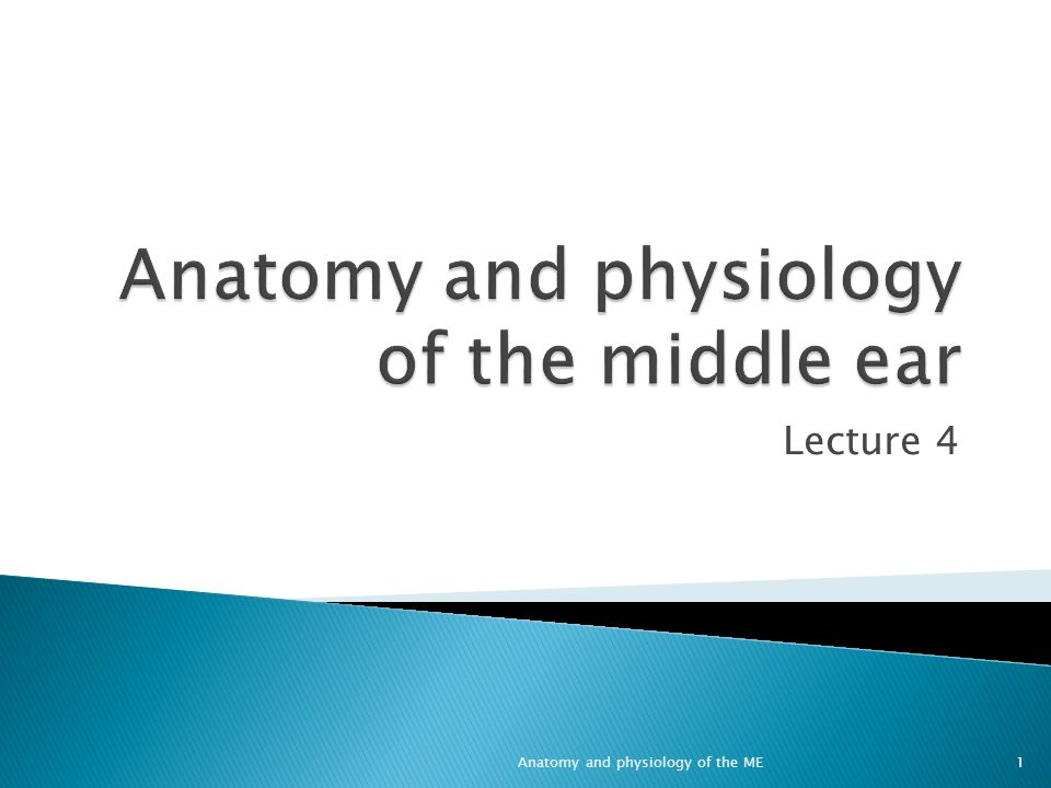 Anatomy and physiology of the middle ear - ppt video online download