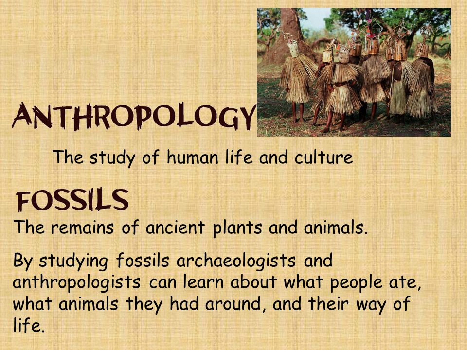 an analysis of culture in ancient times Ancient history section of the bbc history website from the death cults of egypt to the fearsome yet sophisticated society of the vikings, the ancient world was a surprising and challenging place explore the in-depth sections below ancient britain) travel back in time to ancient britain and create your own stone circle.