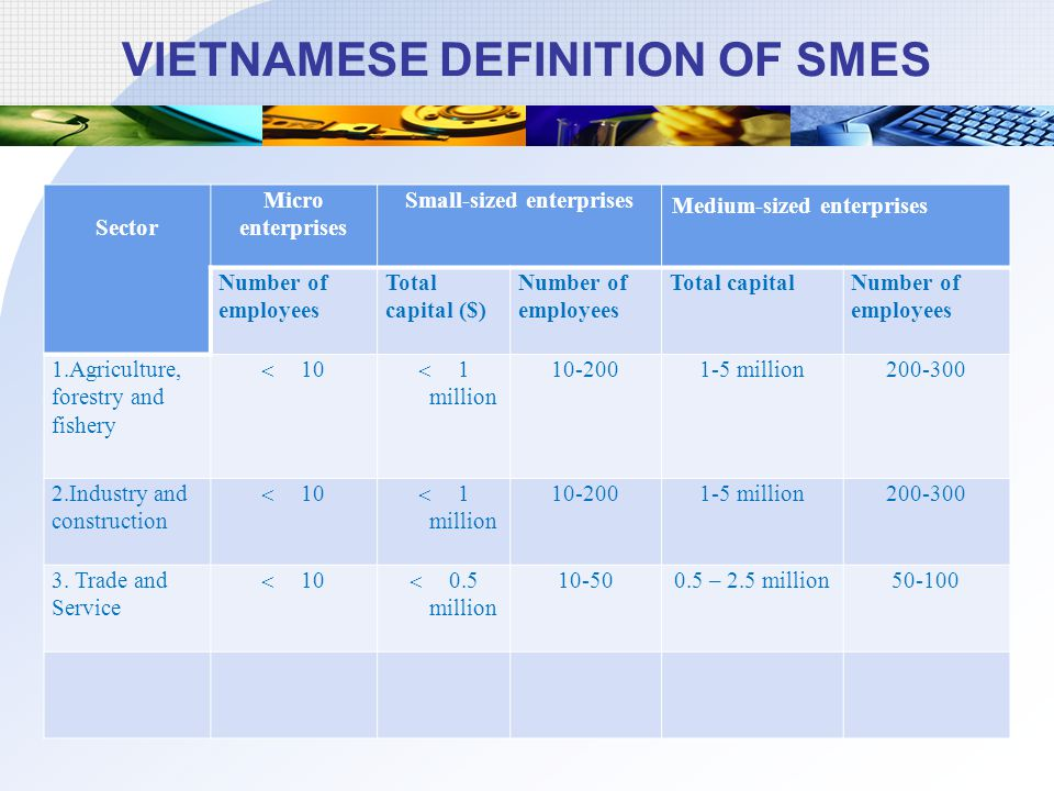 VIETNAMESE DEFINITION OF SMES