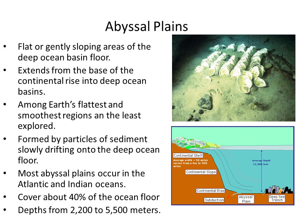 Exploring the ocean floor pbs ppt video online download for 10 facts about sea floor spreading
