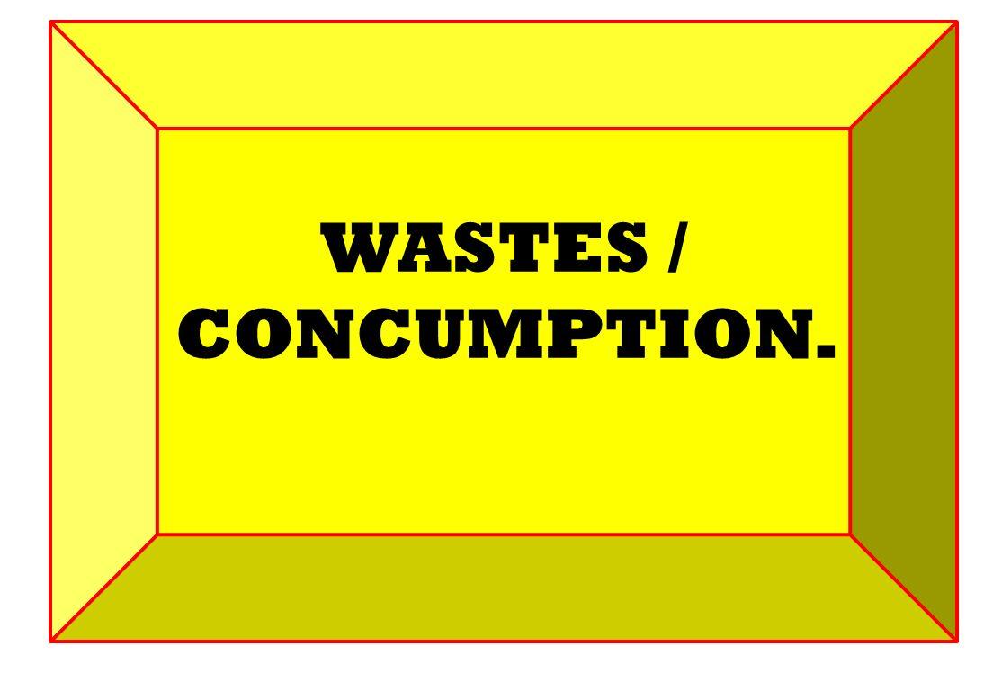 WASTES / CONCUMPTION.
