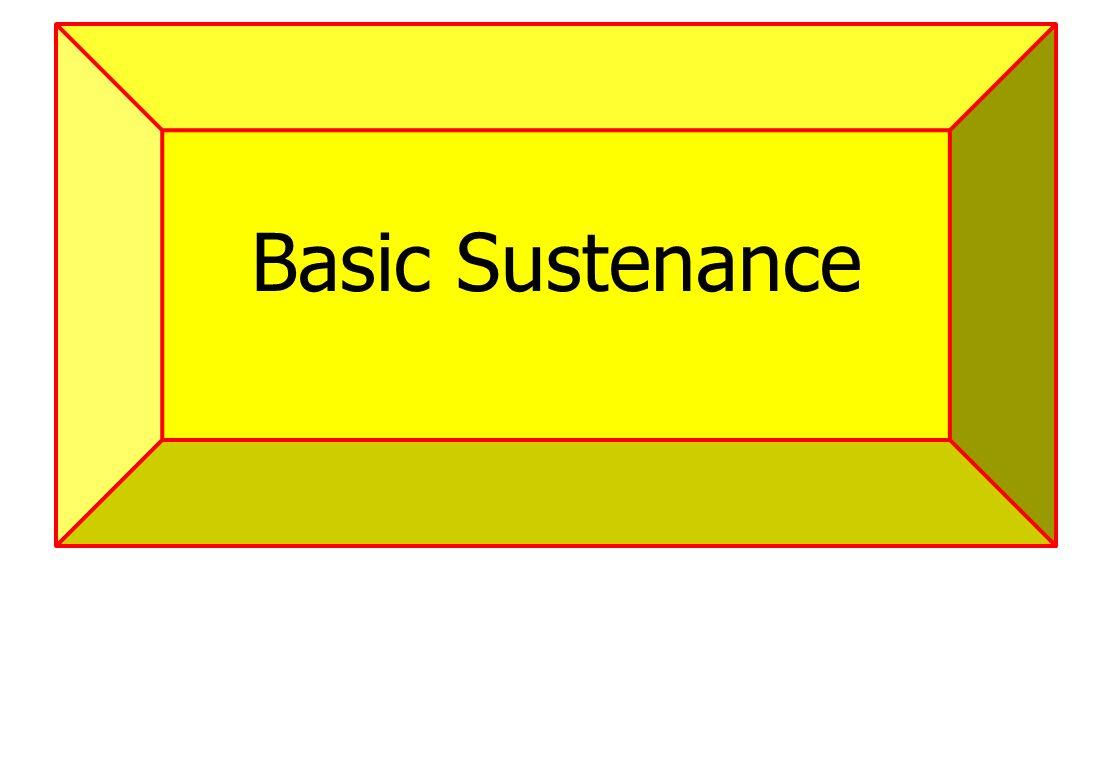 Basic Sustenance