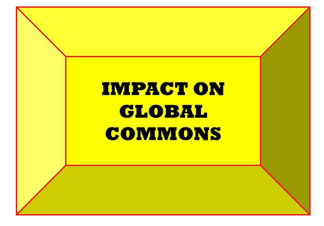 IMPACT ON GLOBAL COMMONS