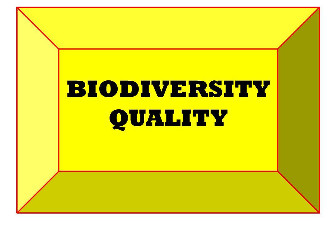 BIODIVERSITY QUALITY
