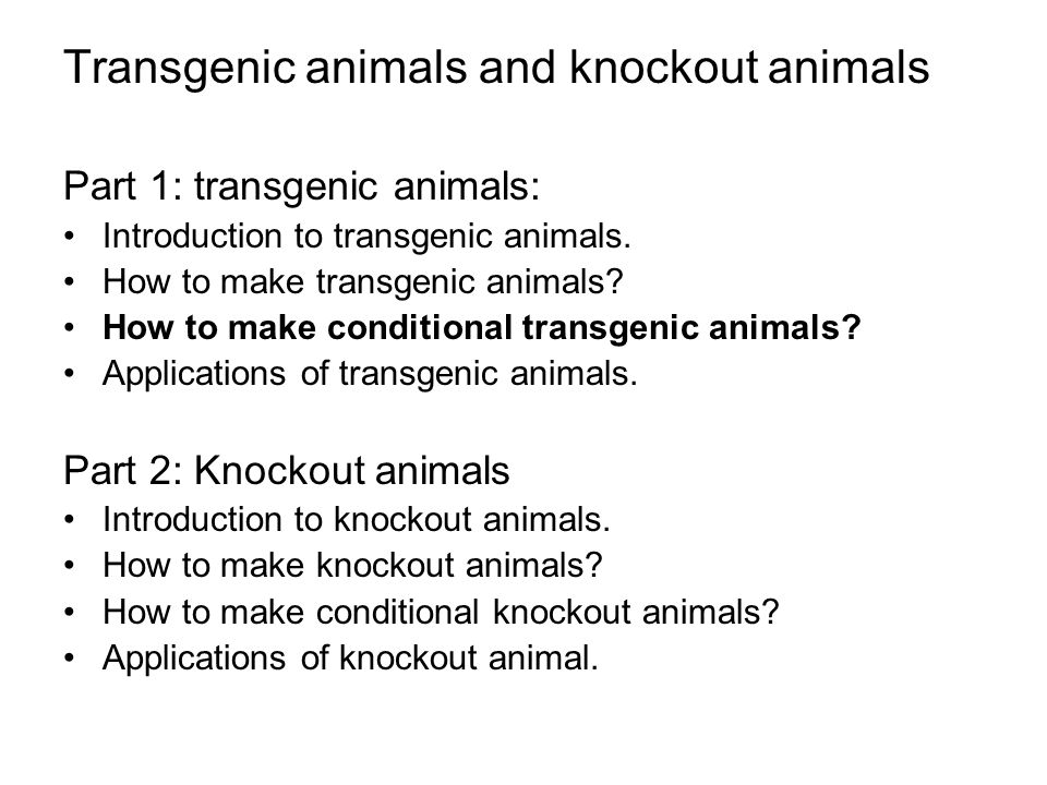 application of transgenic animals pdf