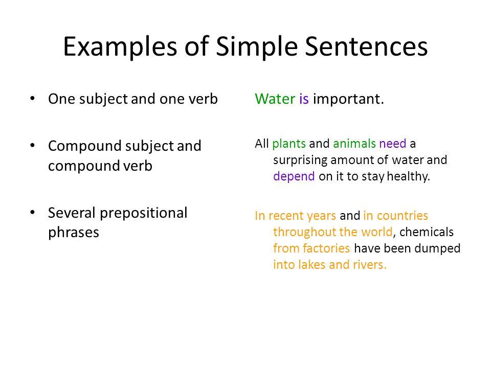 verb examples in sentences pdf