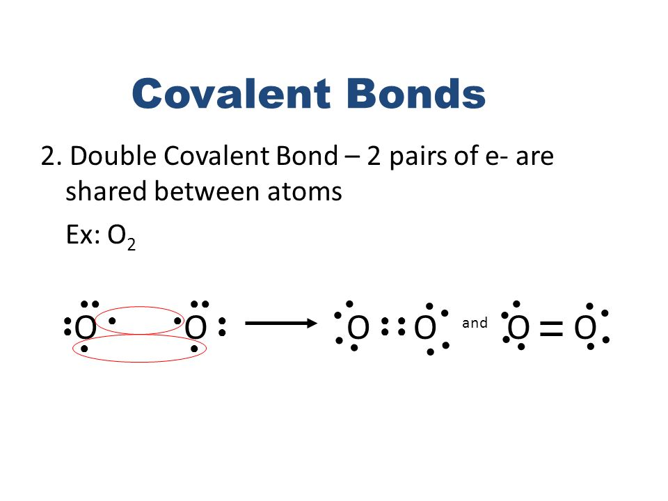 Covalent Bonds 2. Double Covalent Bond – 2 pairs of e- are shared between atoms. Ex: O2. ● ● ● ●