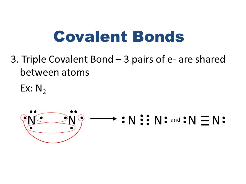 Covalent Bonds 3. Triple Covalent Bond – 3 pairs of e- are shared between atoms. Ex: N2. ● ● ● ●