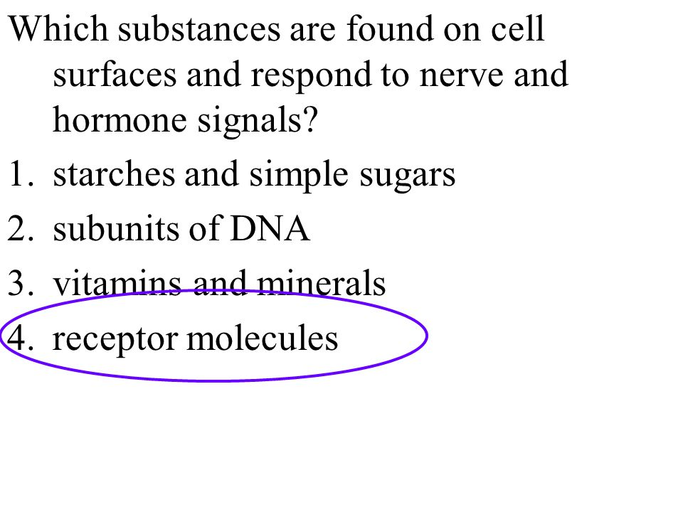 Which substances are found on cell surfaces and respond to nerve and hormone signals