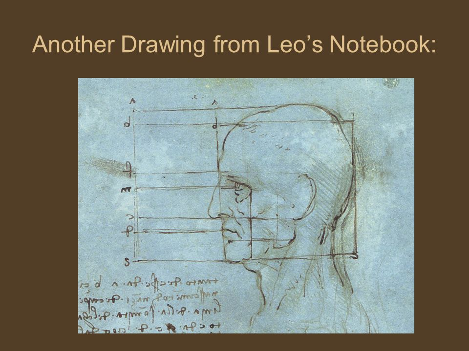 Another Drawing from Leo's Notebook: