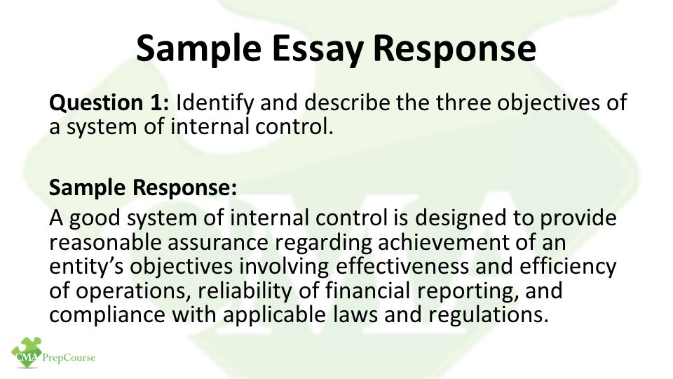 essay internal control reporting