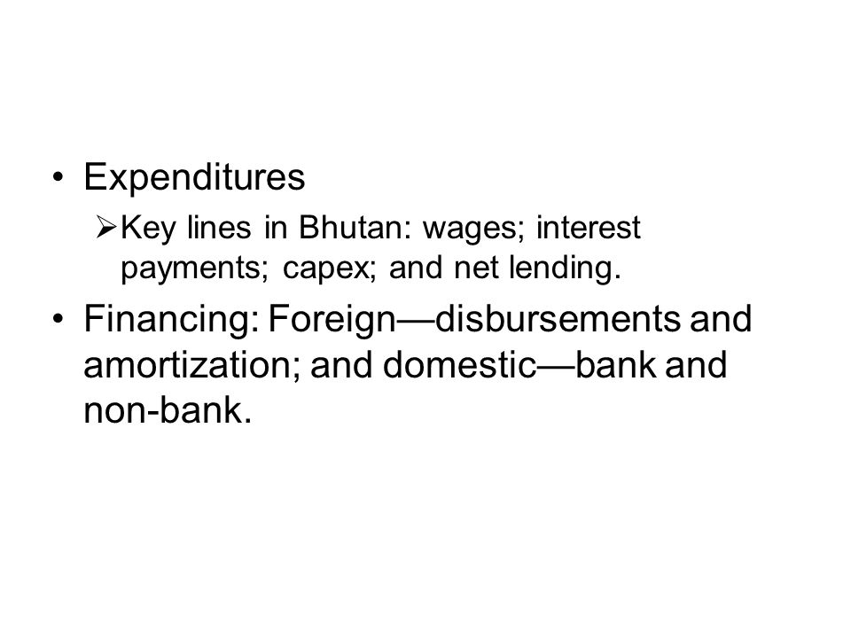 Expenditures Key lines in Bhutan: wages; interest payments; capex; and net lending.
