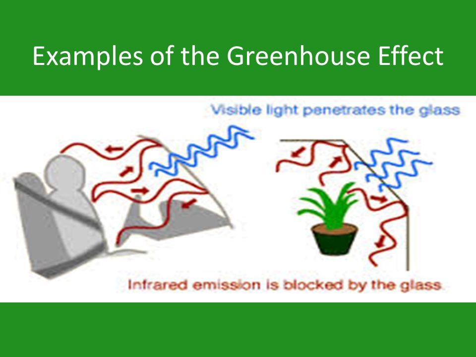 Examples of the Greenhouse Effect
