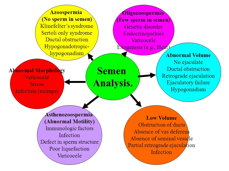 Semen Analysis: Purpose, Procedure & Results