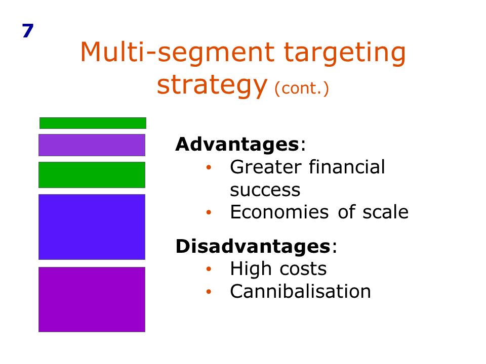 Multi-segment targeting strategy (cont.)