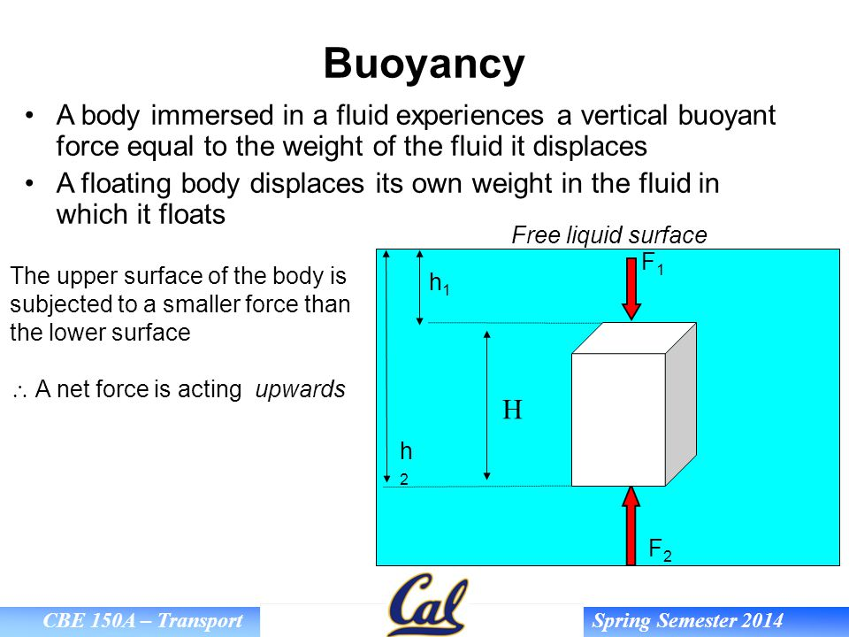 Buoyancy A body immersed in a fluid experiences a vertical buoyant force equal to the weight of the fluid it displaces.