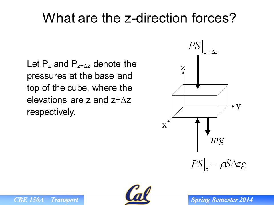 What are the z-direction forces