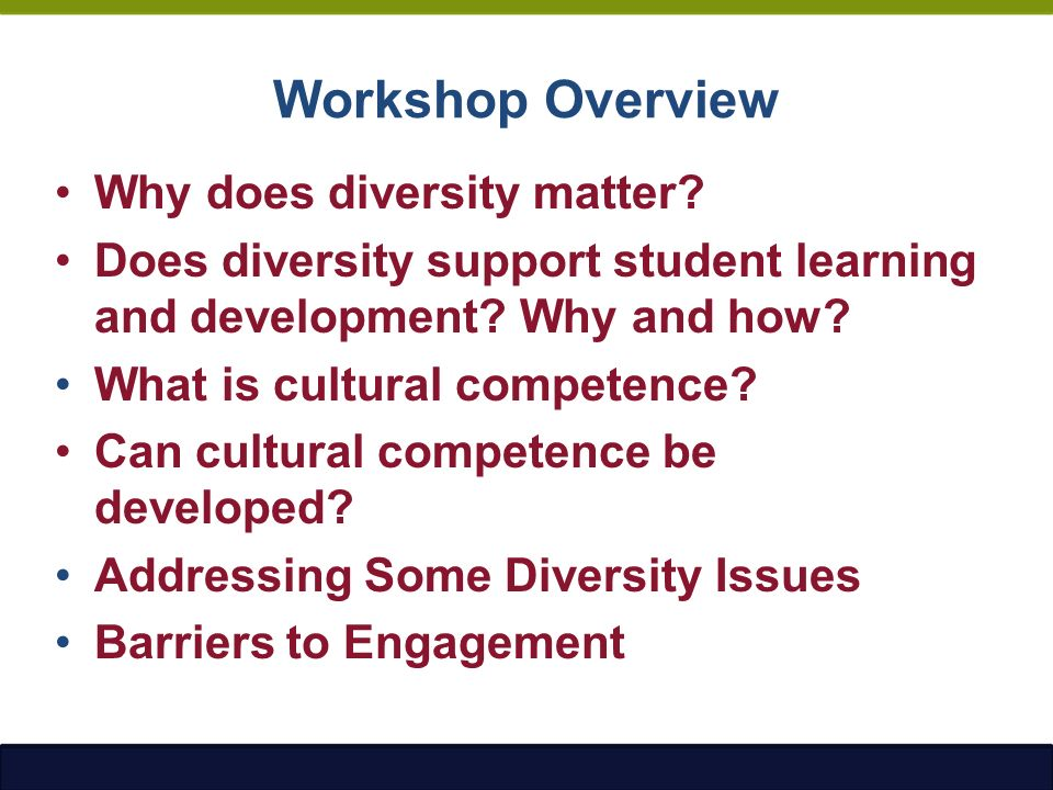 identify some challenges that diversity at Notify me of updates to cultural diversity: issues, challenges and perspectives:  the protection and promotion of cultural diversity at the international level.