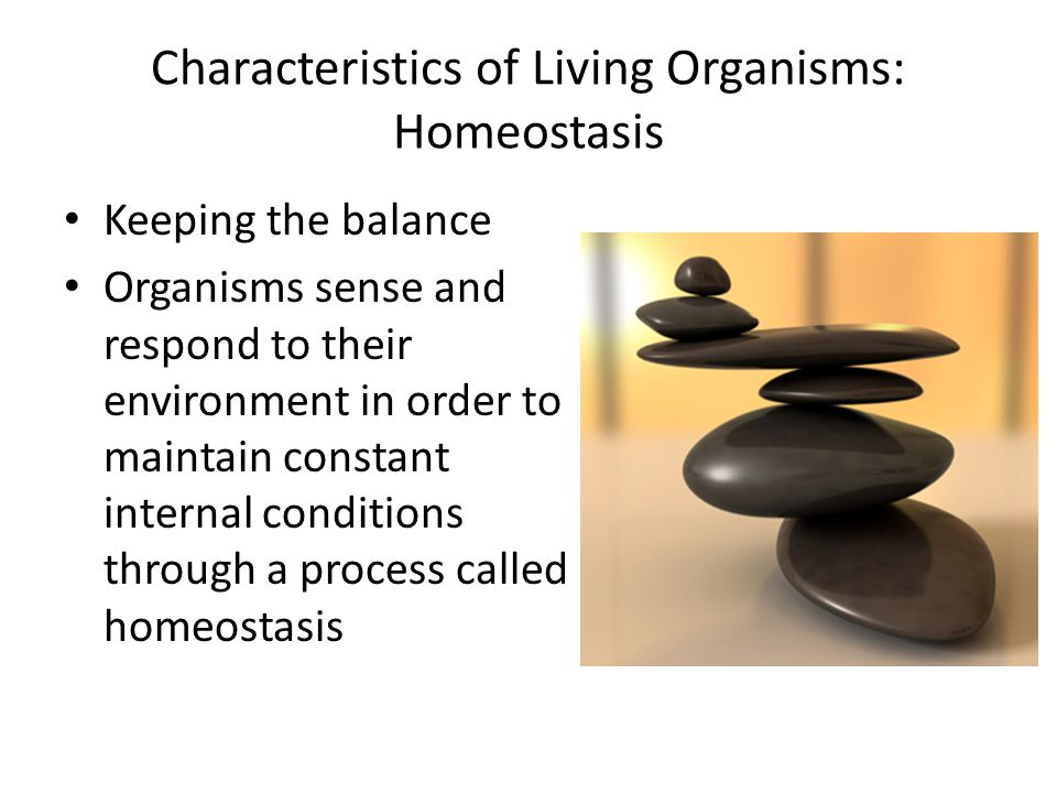 the science of living organism The life sciences focus on patterns, processes, and relationships of living organisms life is self-contained, self-sustaining, self-replicating, and evolving, operating according to laws of the physical world, as well as genetic programming life scientists use observations, experiments, hypotheses.