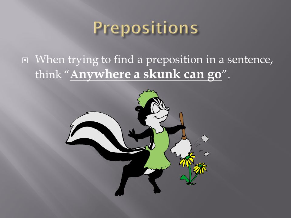 Prepositions When trying to find a preposition in a sentence, think Anywhere a skunk can go .