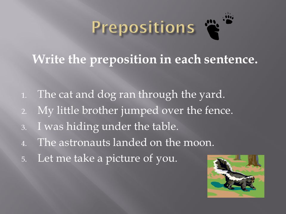 Write the preposition in each sentence.