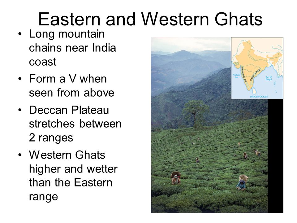 eastern ghats ppt