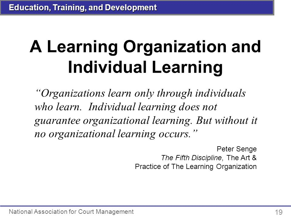 Individual: Organizational Learning Disabilities Essay