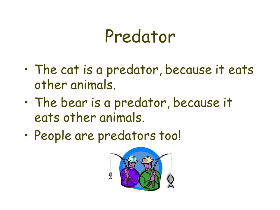 Predator The cat is a predator, because it eats other animals.