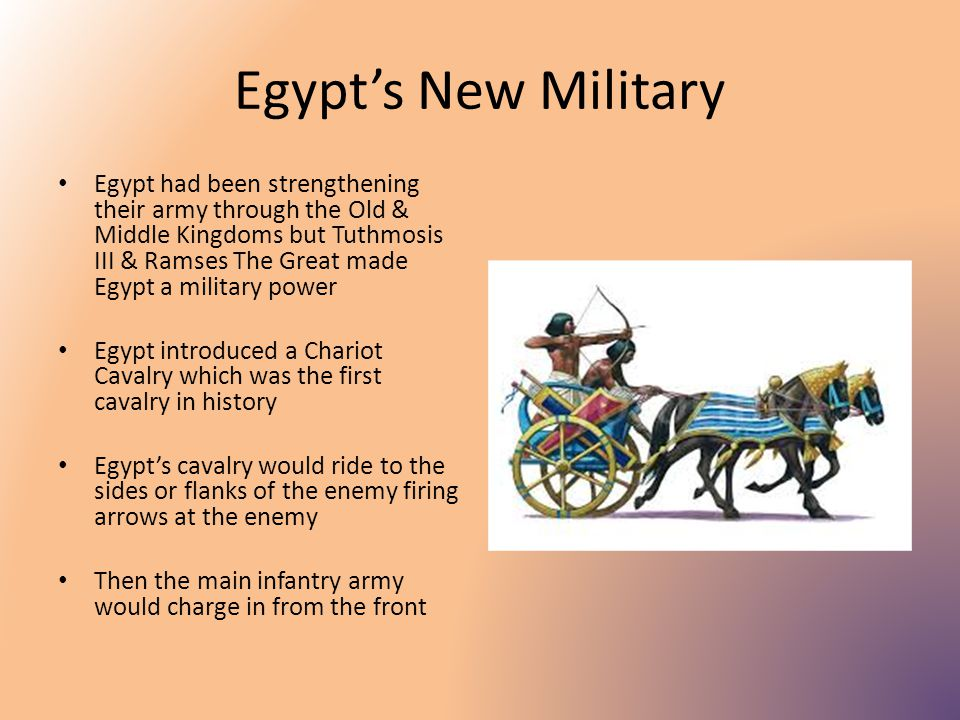 the military in new kingdom egypt This book is an introduction to the war machine of new kingdom egypt from c 1575 bc-1100 bc focuses on the period in which the egyptians created a professional army and gained control of syria, creating an empire of asia.