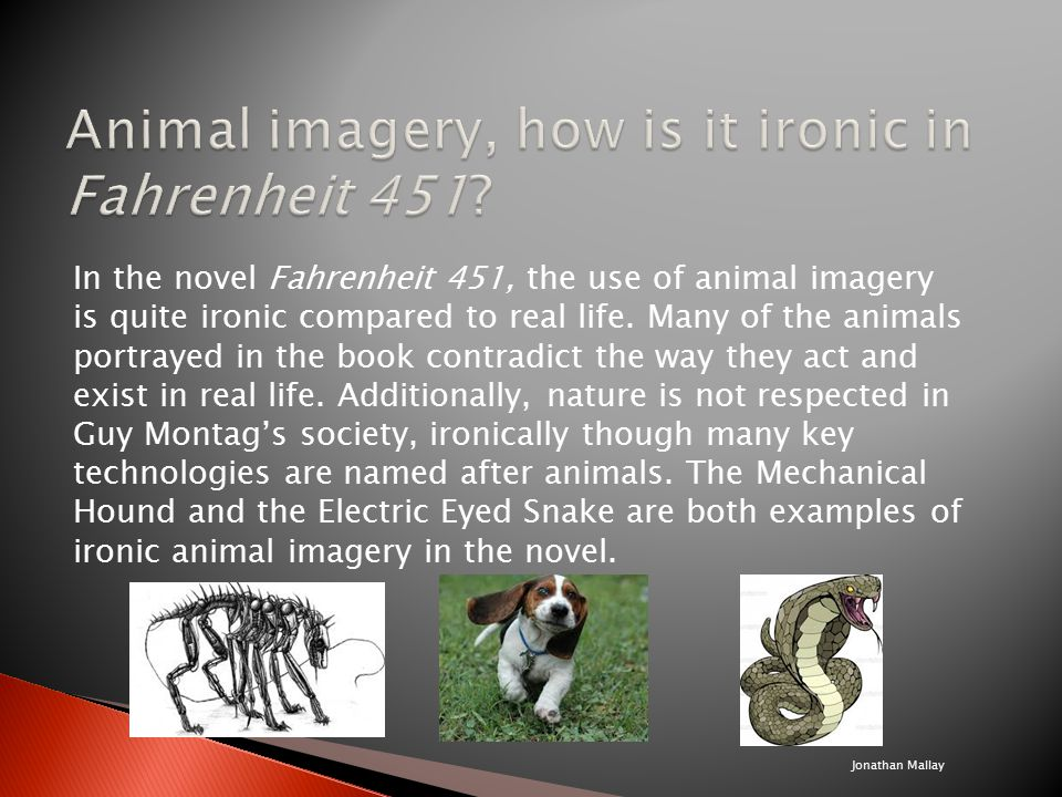 discuss the use of animal imagery Animal imagery in othello in othello, the use of animal imagery is used multiple times by iago to describe the relationships between humans, especially that of.