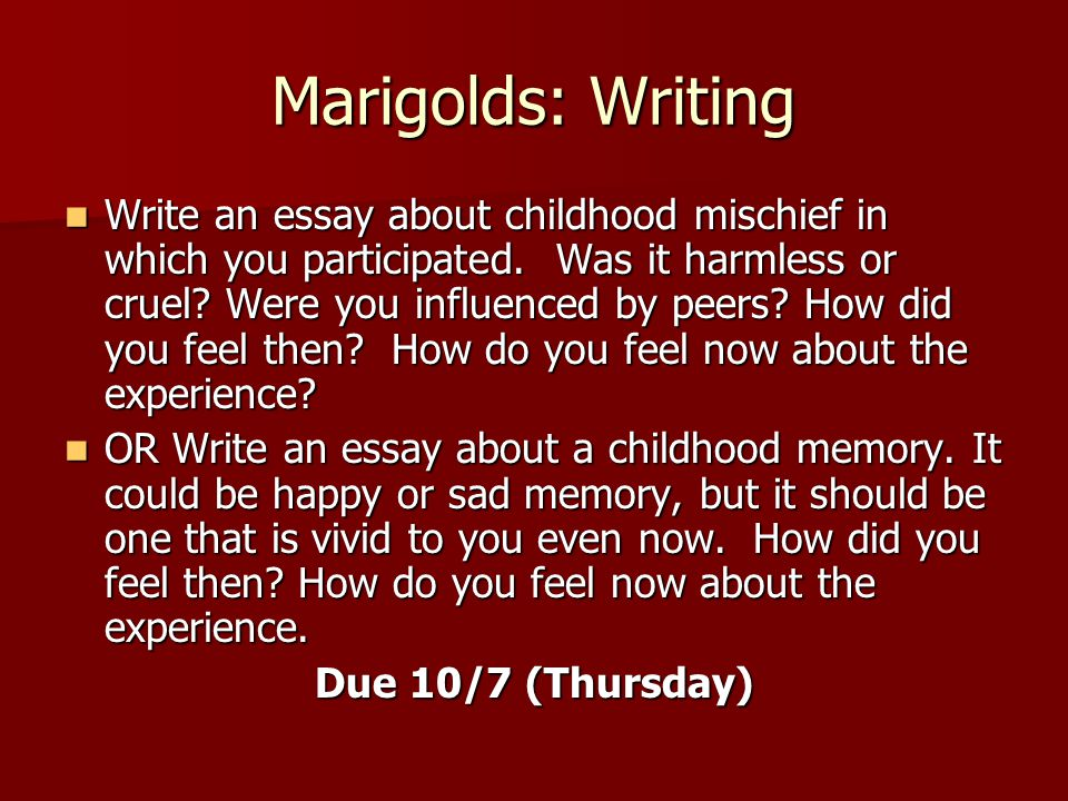 marigold essay Marigolds essaysat the end of the story, the narrator states, this was the beginning of compassion, and one cannot have both compassion and innocence by this she means that it is impossible to be aware of the suffering someone is going through, while at the same time judging them only by wha.