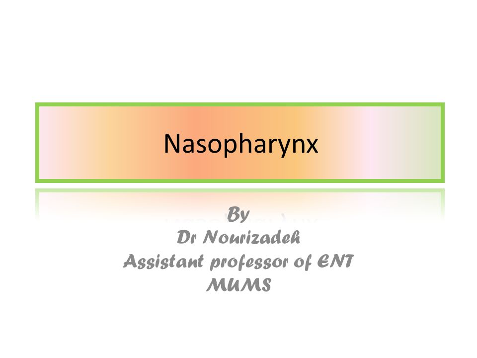 By Dr Nourizadeh Assistant professor of ENT MUMS