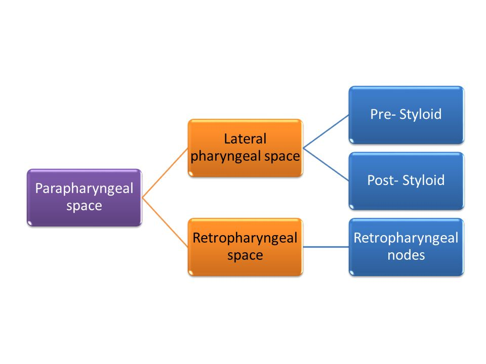 Lateral pharyngeal space Pre- Styloid Post- Styloid