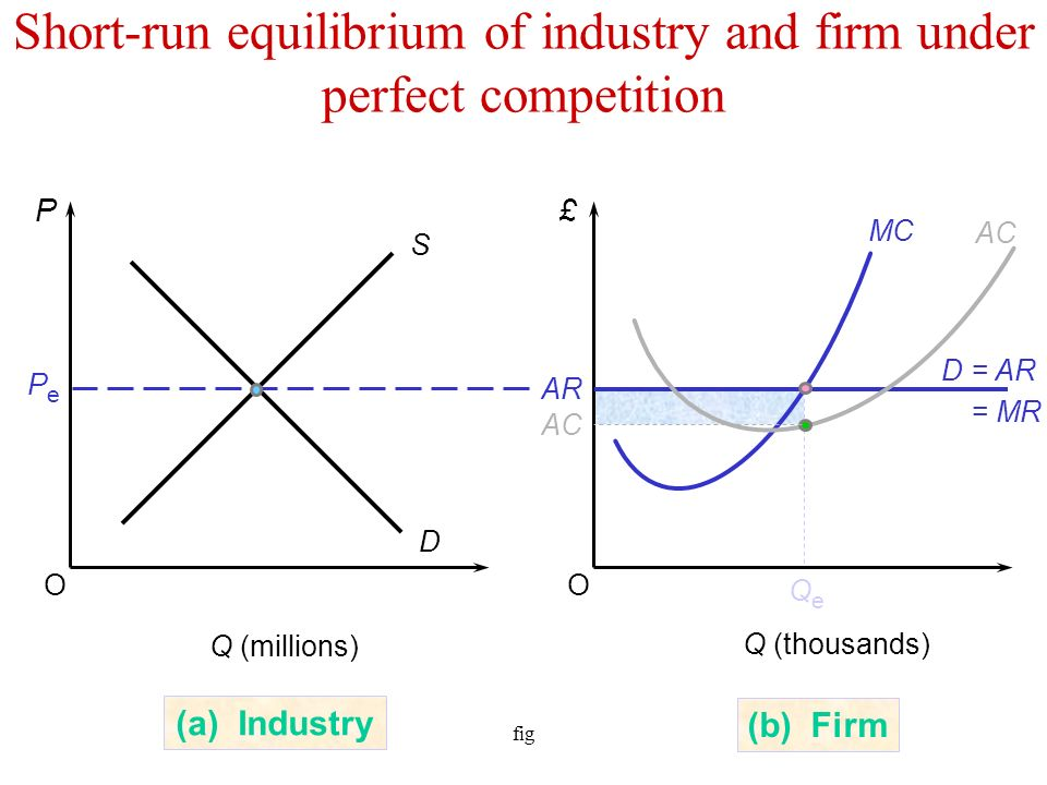 firm behave under perfect competition short and long run Chapter 6 market equilibrium and the perfect competition  the long run under perfect competition is that all  level in the short run, the firm should.