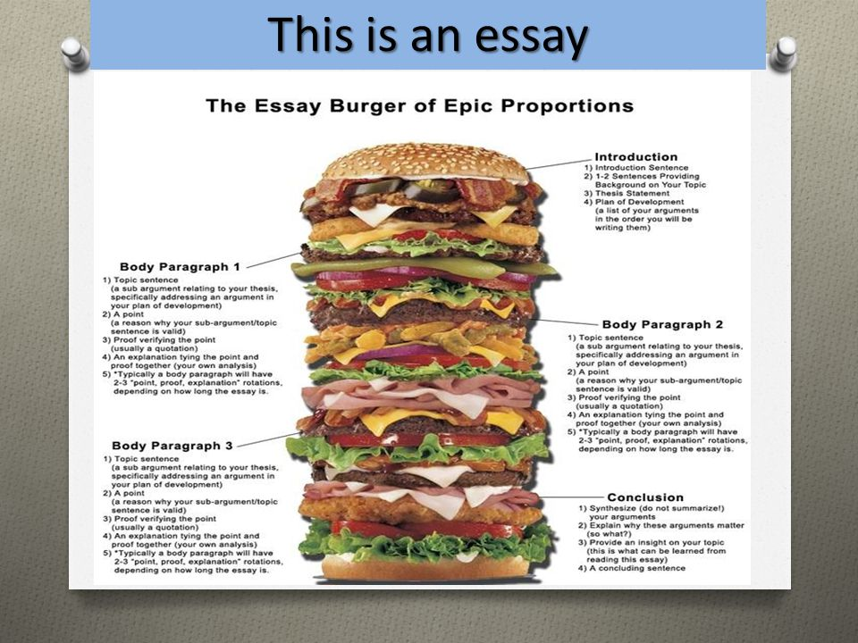 after your introduction each paragraph of your essay should be focused on that supports your thesis Introductions and conclusions play a special role in the academic essay, and they frequently demand much of your attention as a writer a good introduction should identify your topic, provide essential context, and indicate your particular focus in the essay.