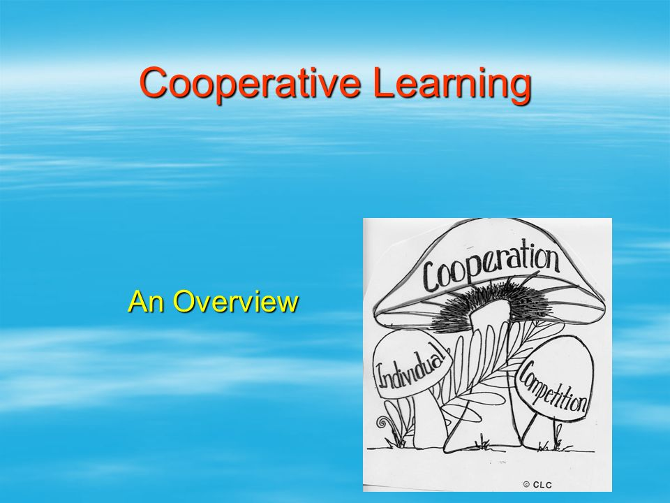 Cooperative Learning An Overview