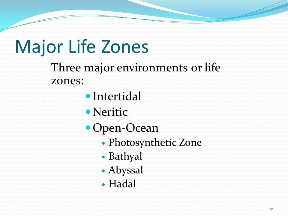 Major Life Zones Three major environments or life zones: Intertidal