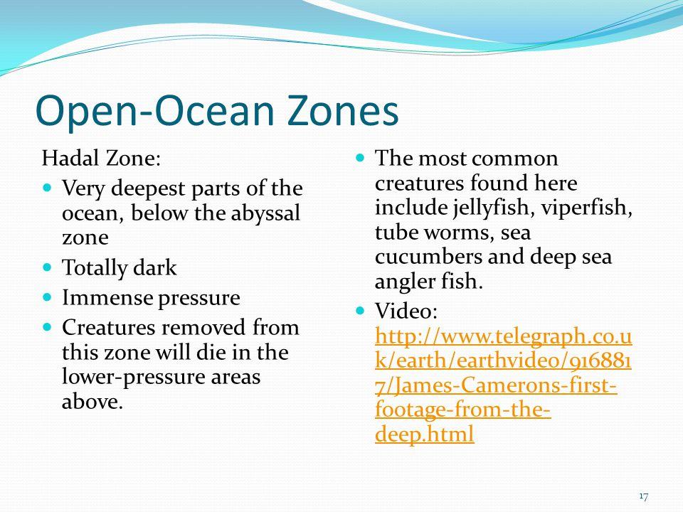 Open-Ocean Zones Hadal Zone: