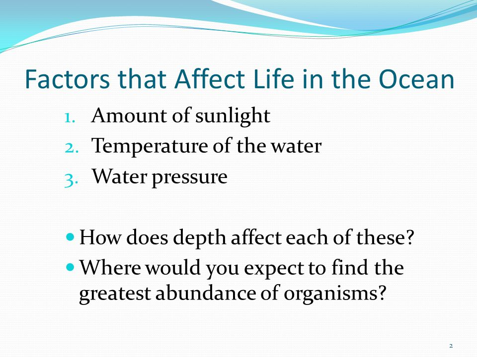 Factors that Affect Life in the Ocean