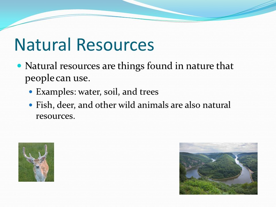 resources and the environment ppt download