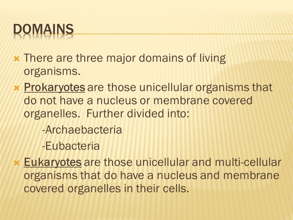 Domains There are three major domains of living organisms.