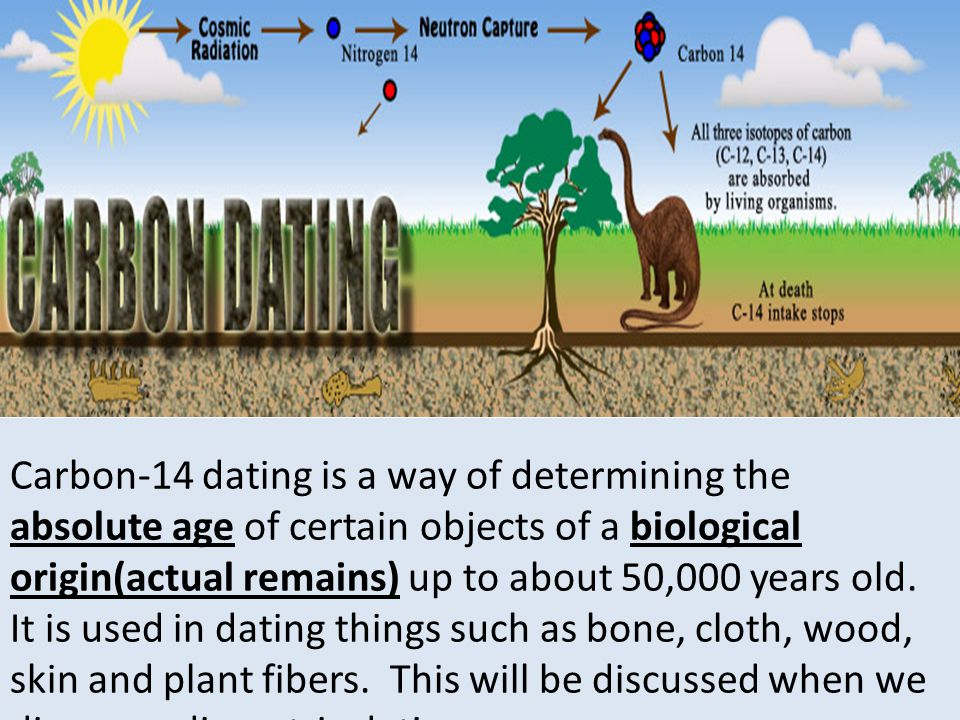 BioMath Carbon Dating