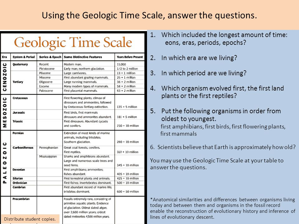 geologic time activity worksheet answers Edumac – Geologic Time Worksheet