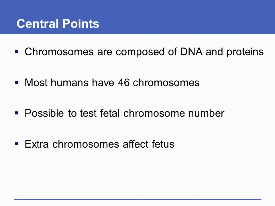 Central Points Chromosomes are composed of DNA and proteins