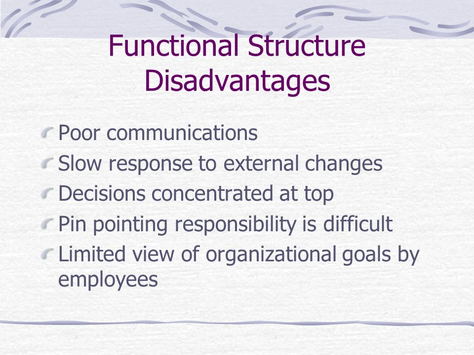 Functional Structure Disadvantages