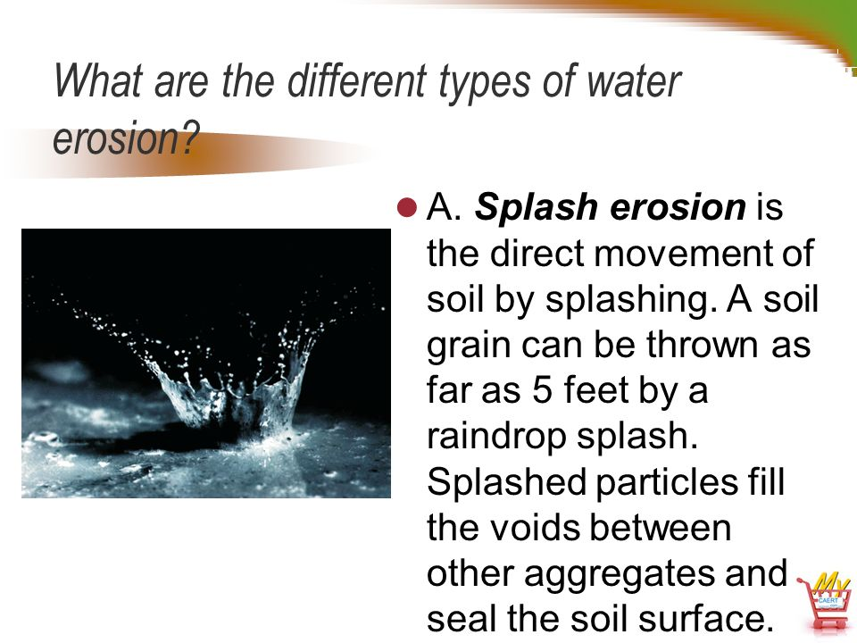 Animal plant soil science d2 3 soil erosion for Different type of water